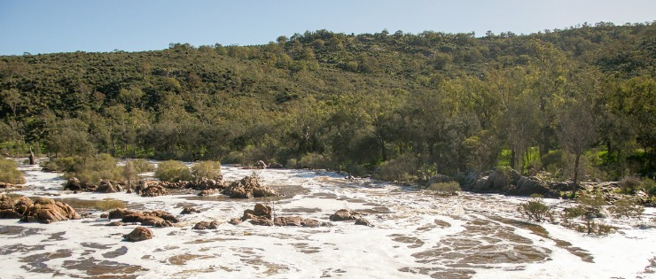 Bells Rapids in Perth - walk over the footbridge then choose which trail you want to take.