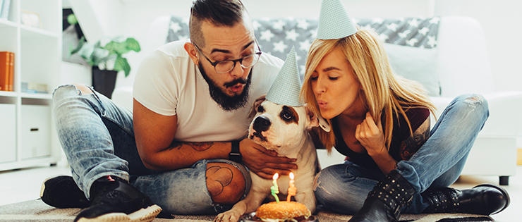 Throwing A Birthday Party For Your Dog