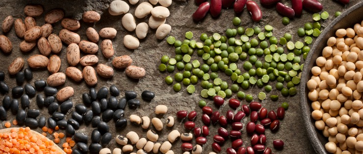Eating a balanced diet with lentils, soy beans and legumes