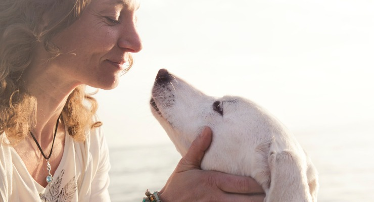 Do Dogs Know When You're Sad? 5 Ways Your Dog Senses your Mood